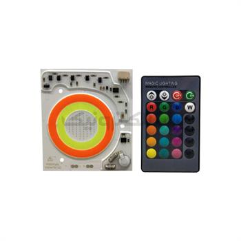 COB 50W RGB 8060 220V